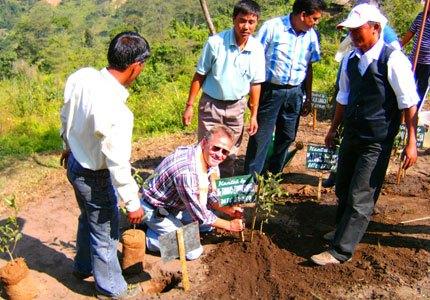 Thomas Zimmermann, Gründer der 'teealternative' beim Pflanzen eines Teestrauchs